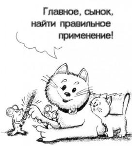koshki_mishki_bmp